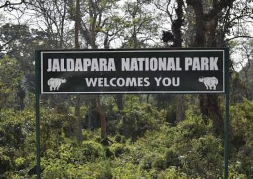 Jaldapara National Park gat