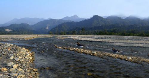 Murti River, Dooars