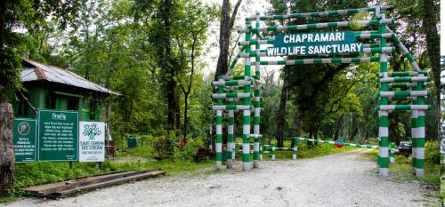 Chapramari Forest Head